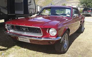 Ford Mustang Rent Otago