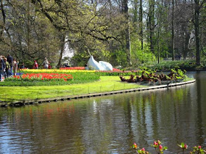 Photo: Parc floral du Keukenhof (1)
