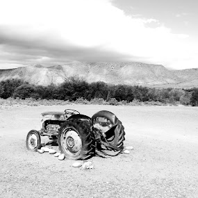 Alone in the Klein Karoo by Hendriette Reyneke - Black & White Objects & Still Life (  )