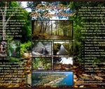 4 Day 'Earth-to-Soul' Yoga & Adventure Retreat : Peace of Eden Vegan Forest Retreat & Backpackers Lodge