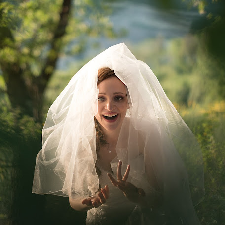 Wedding photographer Paolo Bibi (bibi). Photo of 13.06.2017