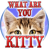 Test: What are you Kitty