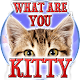Test: What are you Kitty apk