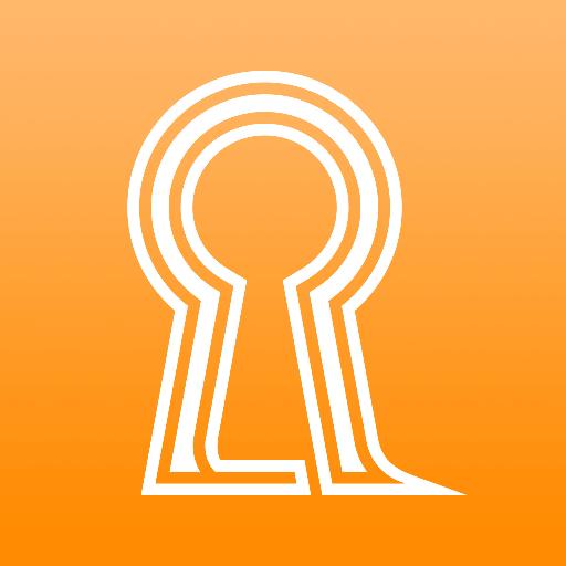 ROOMIS 商業 App LOGO-APP試玩