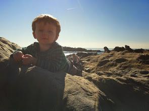 Photo: Finn at Laguna Beach
