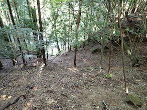 左下の林道へ降りる