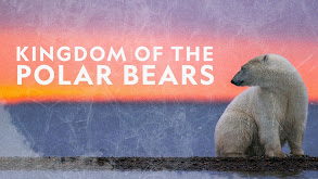 Kingdom of the Polar Bears thumbnail