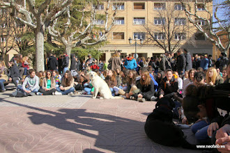 Photo: 26.02.2015.- HUESCA. Huelga de estudiantes