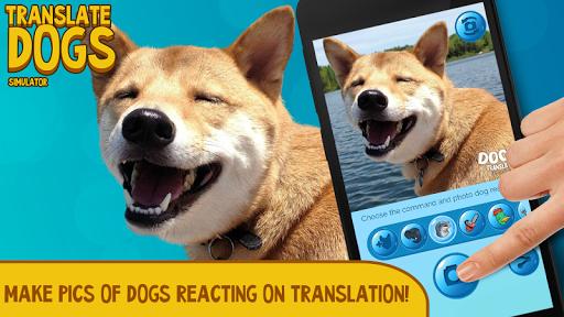 把狗 模拟器
