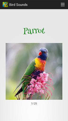 Bird Sounds screenshot 11