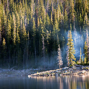 smoke on the water by Brent Flamm - Landscapes Forests ( uinta's, nature, camping, utah, landscape )
