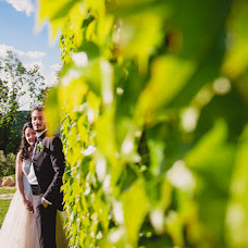 Wedding photographer Tiziana Nanni (tizianananni). Photo of 07.06.2018