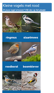 Tuinvogels screenshot 3