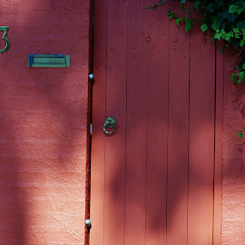 Number 13 by Sarah Harding - Novices Only Street & Candid ( building, street, novices only, door, architecture,  )