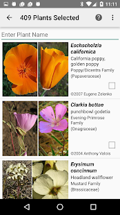 Central California Wildflowers- screenshot thumbnail