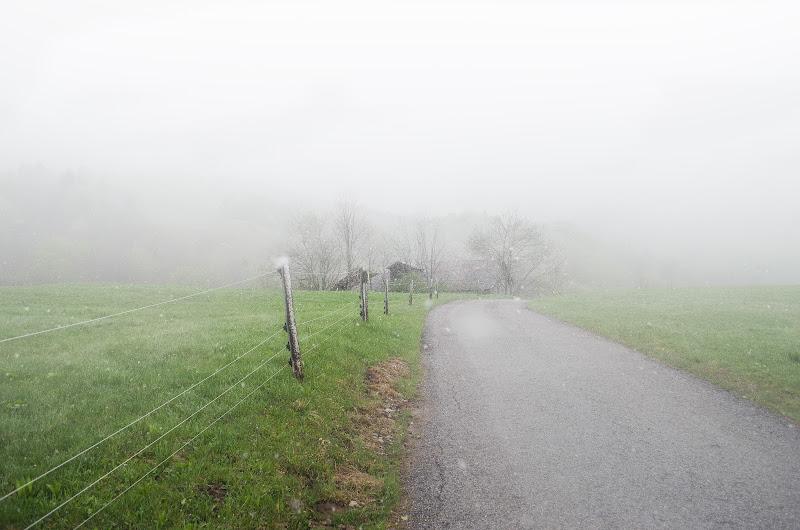 Nebbia di primavera di Moreno re