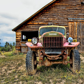 ~guarding the barn~ by Kirk Kimble - Transportation Other ( old, barn, 1948, truck, wagon, power, dodge, antique, power wagon )