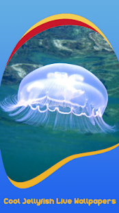 Cool Jellyfish Live Wallpapers - náhled