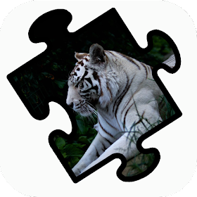 Tiger Jigsaw Puzzle World