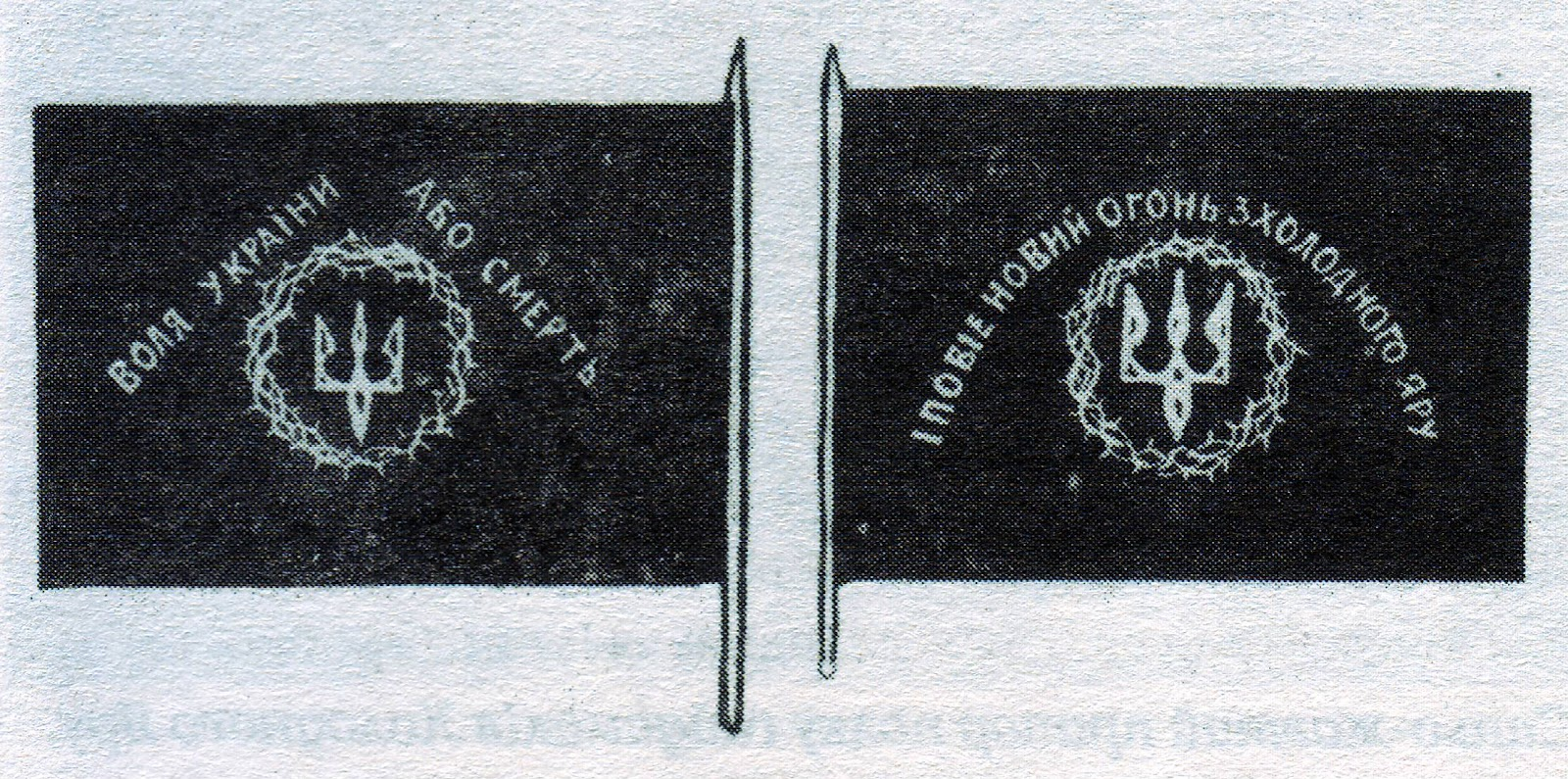 Чорний прапор холодноярців