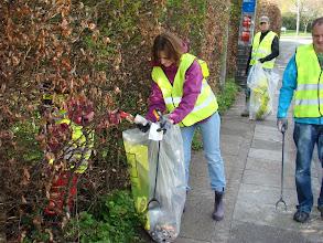 Photo: Aflevering af affald igennem hæk