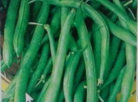GREEN BEANS. Snap ends of off firm fresh green beans, and cook in a small...