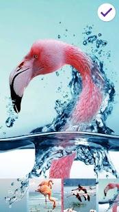 Flamingo Animal Sceen Lock - náhled