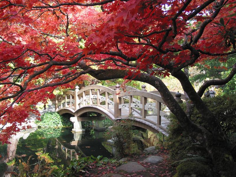 Opberg Ideeen Woonkamer : Pretty Japanese Garden
