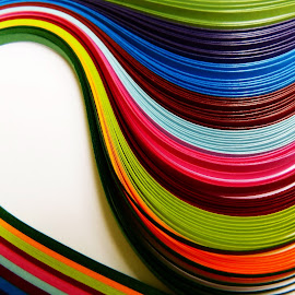colors by Rs Photography - Abstract Macro ( digital, desktop, wallpaper, mobile, wallpapers, latest )