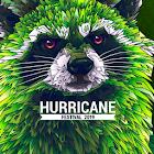 Hurricane Festival icon