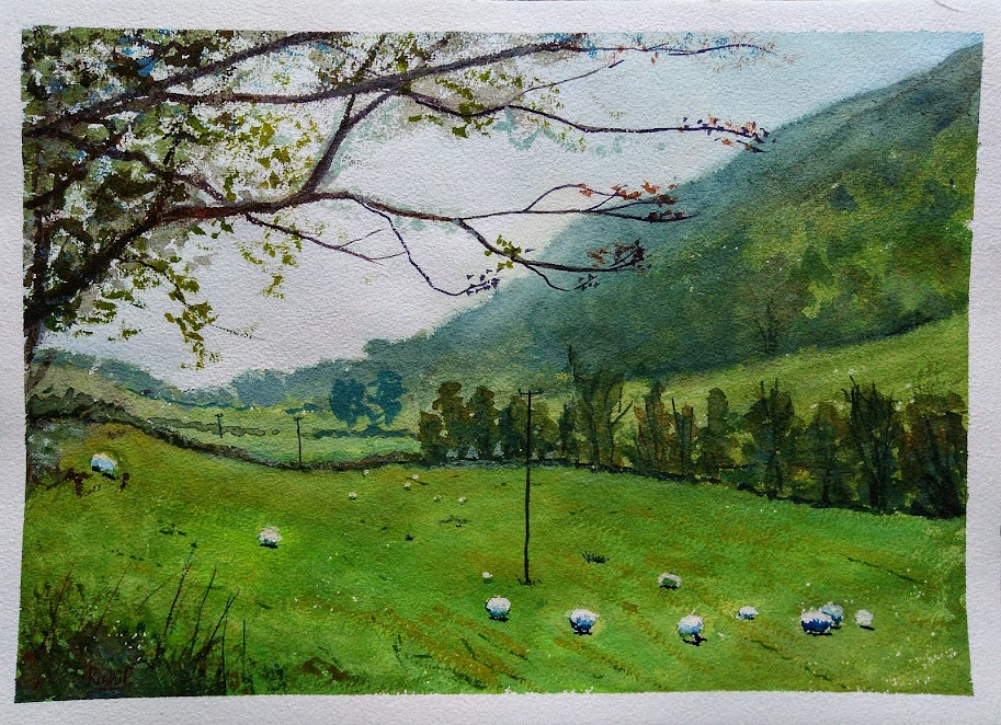 watercolour painting - sheep in the meadow