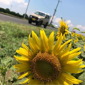 ジムニー JA22W のカスタム事例画像 モケケ!さんの2018年07月15日15:01の投稿