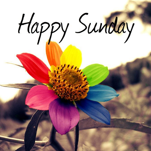 遊戲App|Happy Sunday SMS Messages LOGO-3C達人阿輝的APP