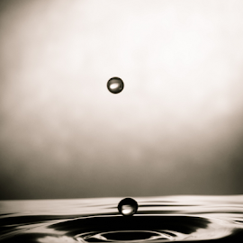 double drop by Vandal Panda Photog - Abstract Water Drops & Splashes ( water, water drops, splashing, splash, silhouette, shadow, drop, nikon, light, water droplets, droplets )