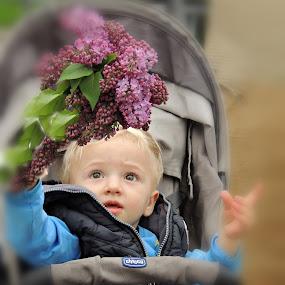 by Olivera Prelevic Tanasic - Babies & Children Children Candids (  )