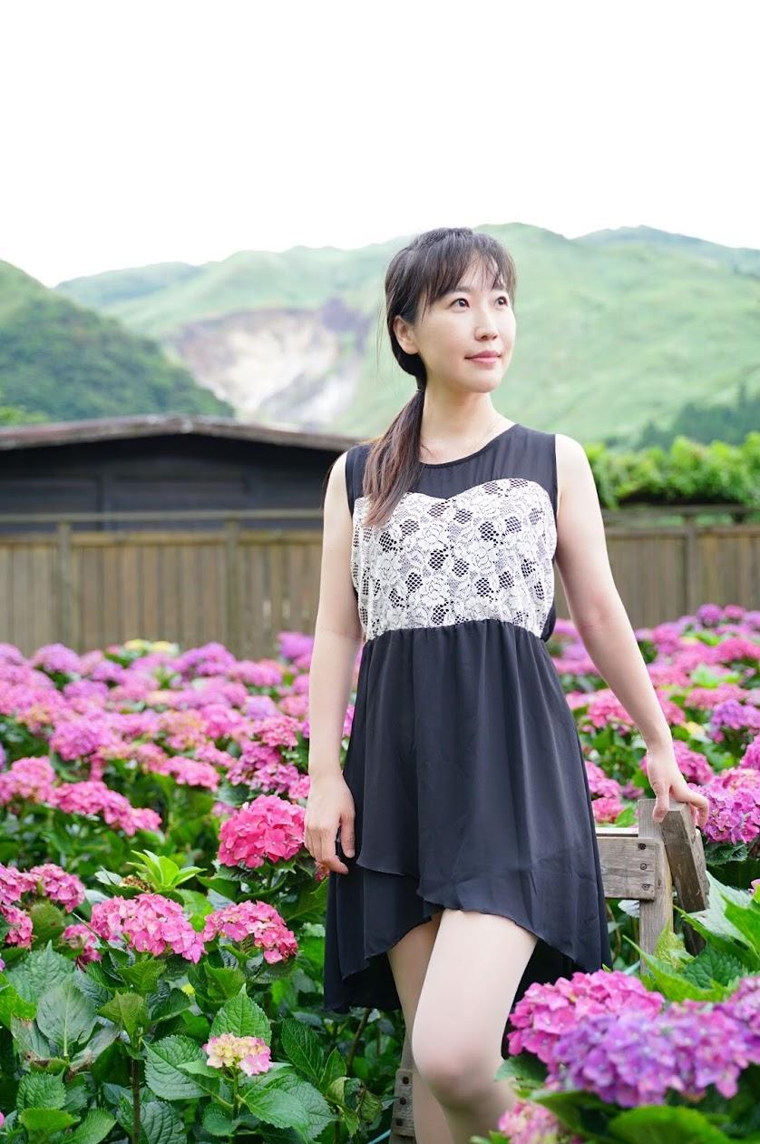 蘿絲紫陽花照-金山溫泉會館