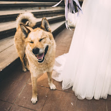 Wedding photographer Lena Karpenko (lenakarpenko). Photo of 26.10.2018