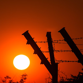 *** by DC Photos - Novices Only Landscapes ( love, beautiful, barbed wire, plovdiv, sunset, bulgaria, silhouette, sun, home )