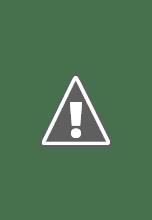 Photo: V dětské lesní kuchyňce