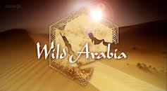 Wild Arabia (S1E1)
