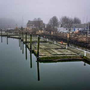 500 px foggy day in harbor-.jpg