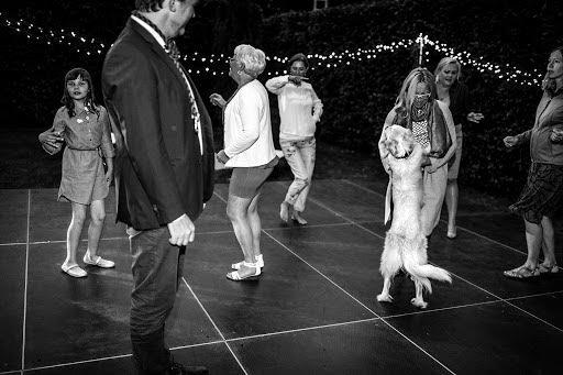 Wedding photographer Petr Wagenknecht (wagenknecht). Photo of 26.07.2018