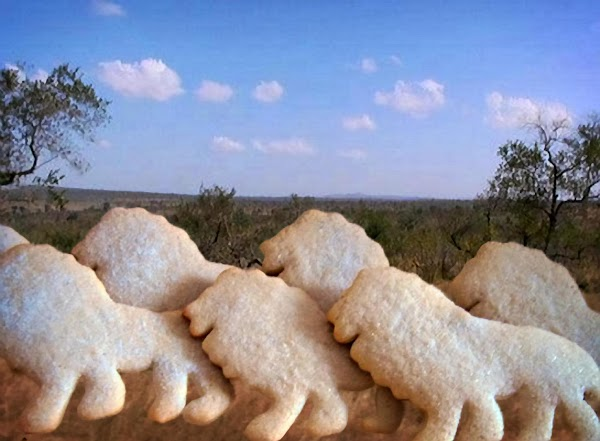 Mace Sugar Cookies Recipe