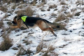 Foto: Fart och fläkt - inte lätt att fånga med en digitalkamera ;-)