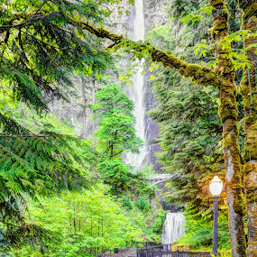 Gorge waterfall by John Broughton - Landscapes Waterscapes ( lamps, waterfalls, pathway, trees )