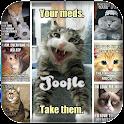 Funny Cat Memes icon