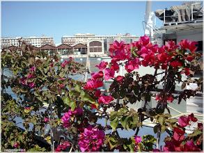 Photo: Vista de los tinglados del puerto de Valencia  http://www.viajesenfamilia.it/