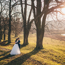 Wedding photographer Lyubomir Vorona (voronaman). Photo of 13.11.2015