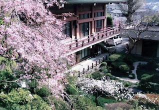 Photo: 春の乗誓寺 庭園