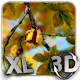 Autumn Leaves in HD Gyro 3D XL  Parallax Wallpaper icon